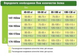 kolvo-belka-520x372